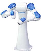 ROBOTS DOUBLE BRAS
